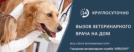 Ветеринарная помощь на дому (ЗАО) Западном Административном округе в районе Кунцево